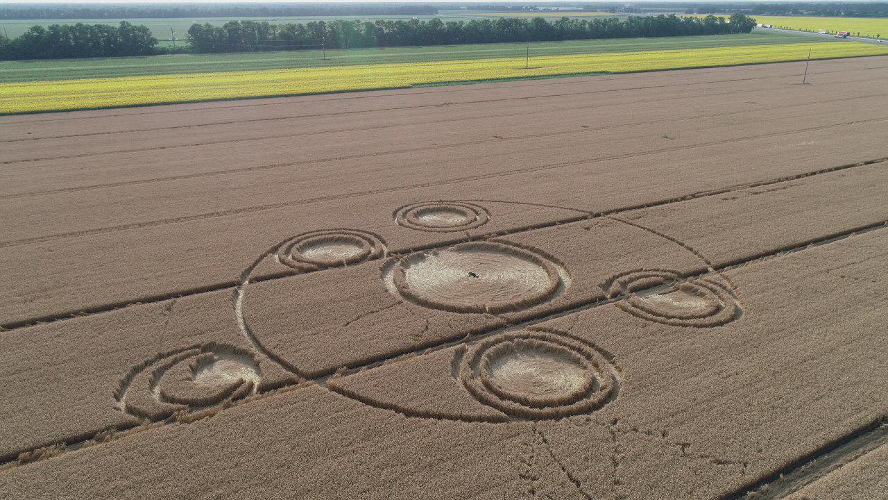Внеземное происхождение кругов на полях в Краснодаре будет доказано научными методами