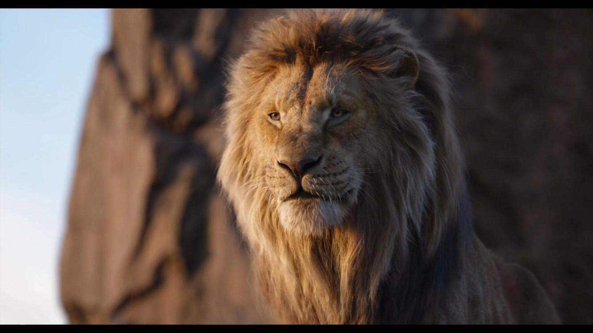 «Король Лев» стал лучшим зарубежным фильмом в российском прокате