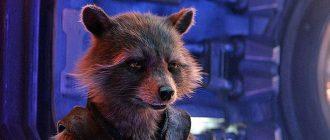 Мы знаем о прошлом Енота Ракеты в киновселенной Marvel