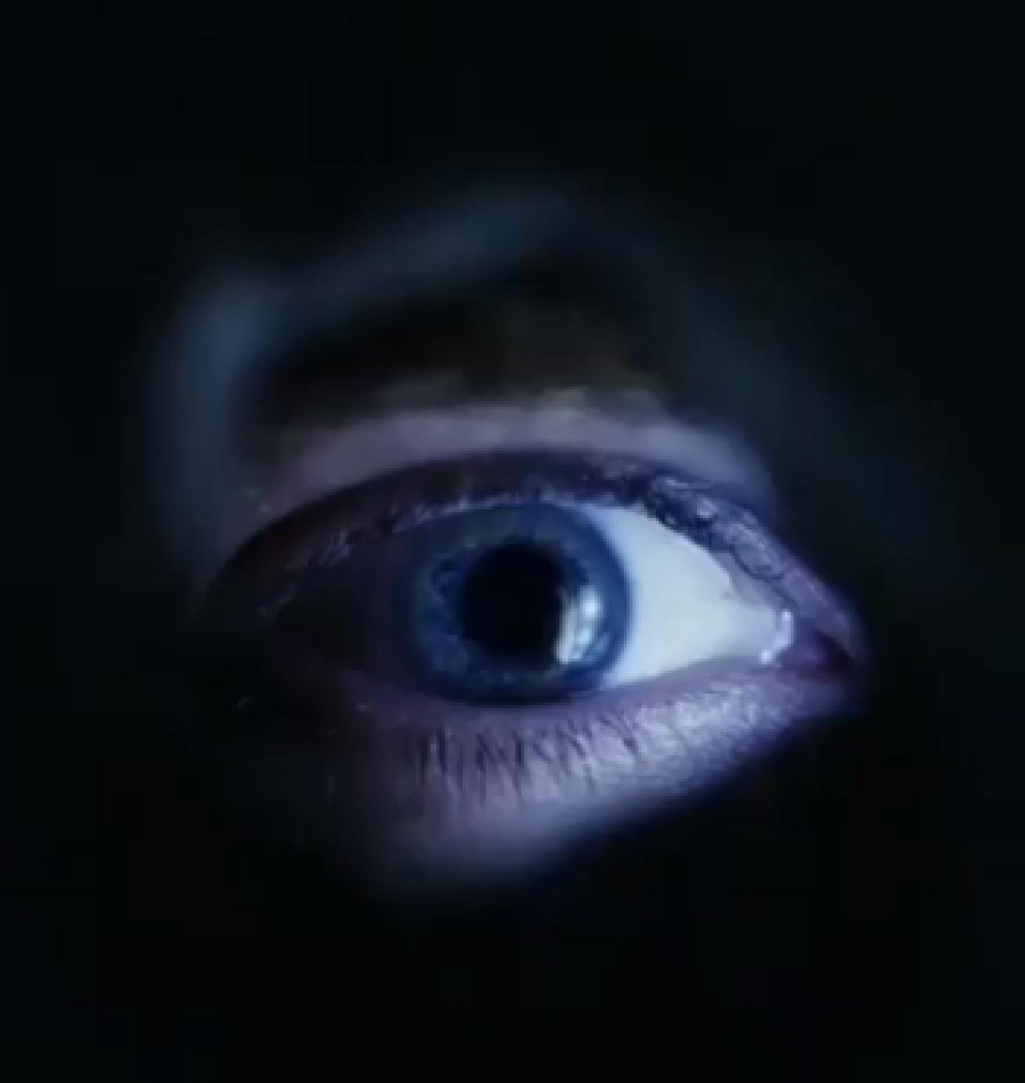 Спин-офф «Американской истории ужасов» официально запущен в разработку