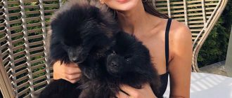 Оксана Самойлова предстала перед фанатами в образе блондинки