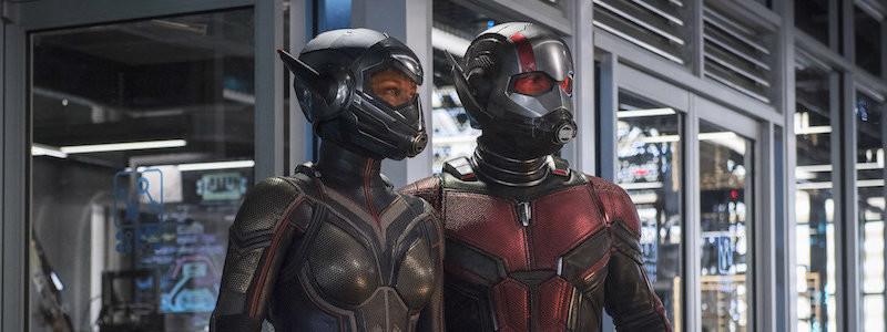 Подтверждено, когда начнут снимать «Человек-муравей и Оса: Квантомания»