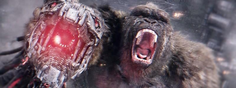 Сборы фильма «Годзилла против Конга» в США превзошли ожидания